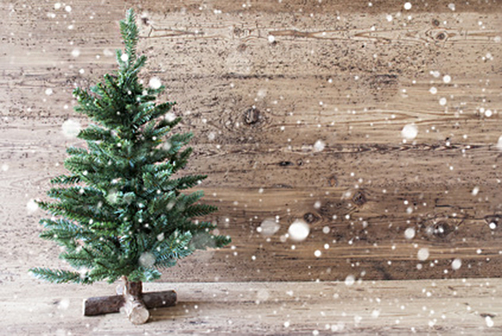 Christmas Card For Seasons Greetings. Green Christmas Tree With In The Front Of Aged Wooden Background. Rustic Or Retro Style With Snowflakes. Copy Space For Advertisement